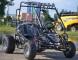 Nitro Buggy 200cmc DNR, 2015