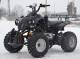ATV MODEL:AKP WARRIOR 150CMC #
