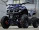 ATV Eco Torino 800W 36V DELUXE