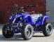 ATV KXD ECO Torino 800W 36V