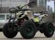 ATV Torino 800W 36V Grafiti